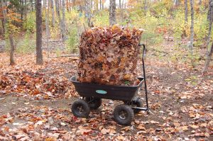 leafmover